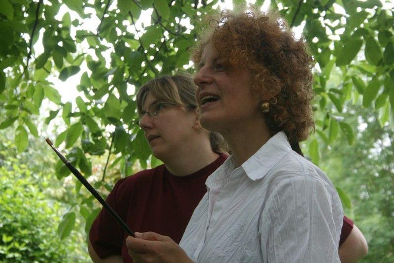Silvia Gronemann: Malkurse seit 2009